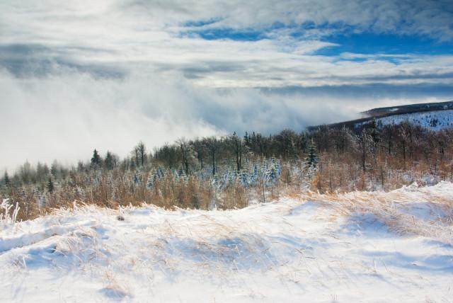 Böhmischer Nebel bei Cínovec