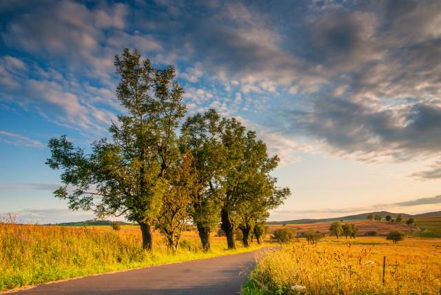 Straße von Adolfov nach Fojtovice