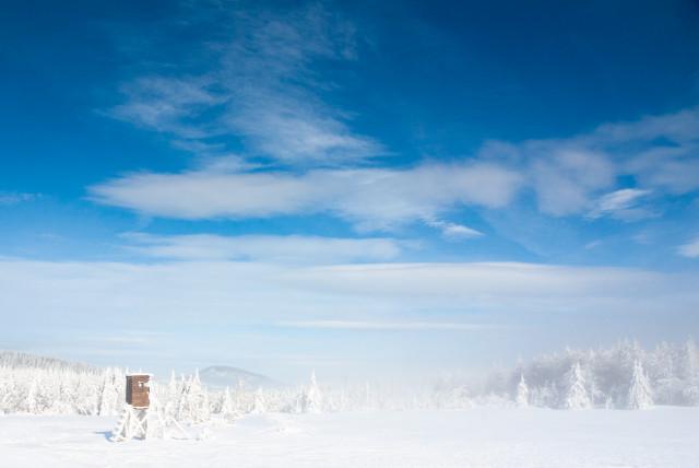 Winterlandschaft bei Zinnwald-Georgenfeld