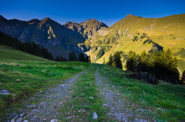 Weg von der Hohniesenalp ins Tal