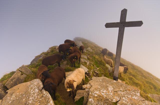 Mäggisserenhorn-Gipfel