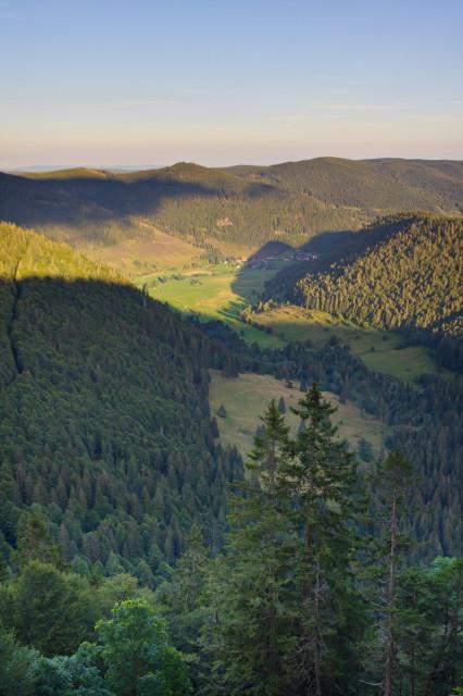 Blick über das Krunkelbachtal