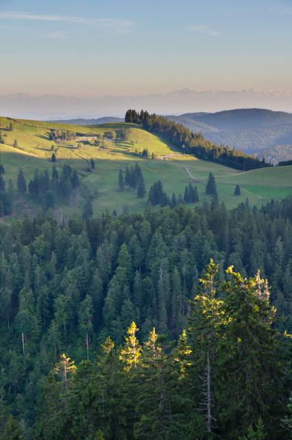 Blick über die Krunkelbachhütte zu den Alpen