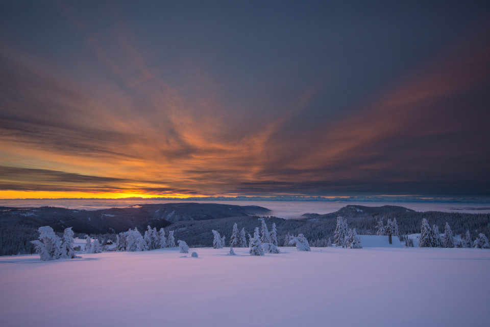 Winterliche Morgenstimmung am Feldberg