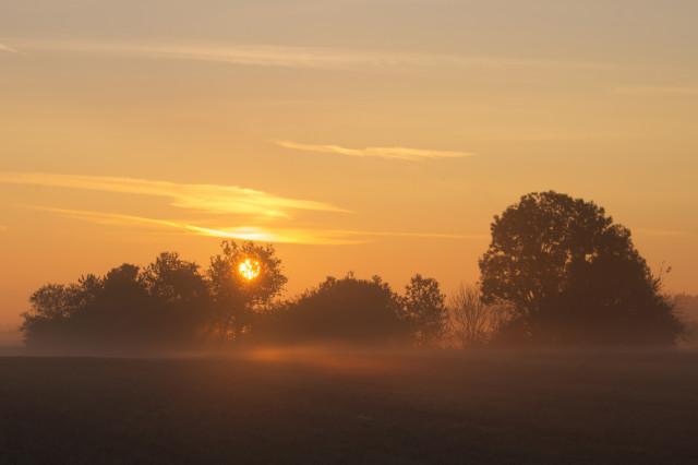 Sonnenaufgang bei Bühlenhausen