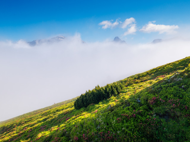 Nebel über dem Riedingtal
