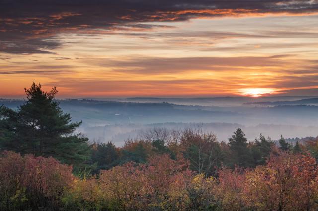 Herbstmorgen auf dem Büchelberg