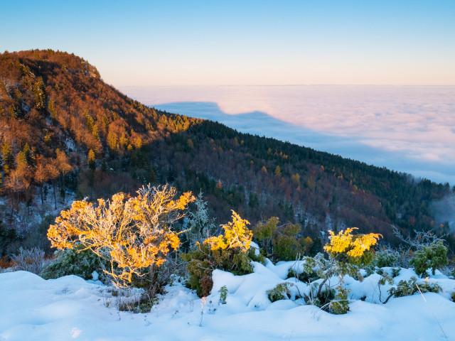 Aussicht vom Lochenstein bei Inversionswetterlage