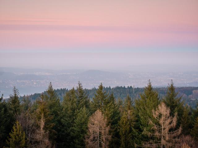 Blick über Pforzheim von der Büchenbronner Höhe