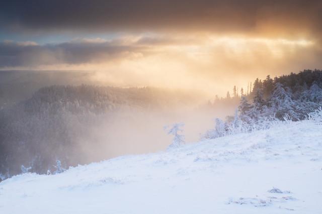 Wintermorgen auf der Hornisgrinde