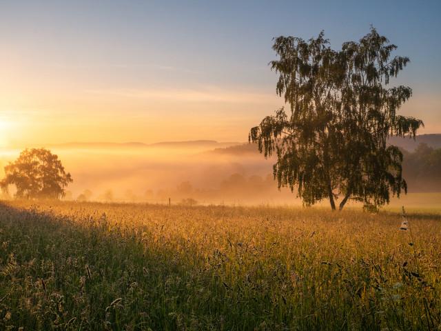 Morgenstimmung bei Marienberg