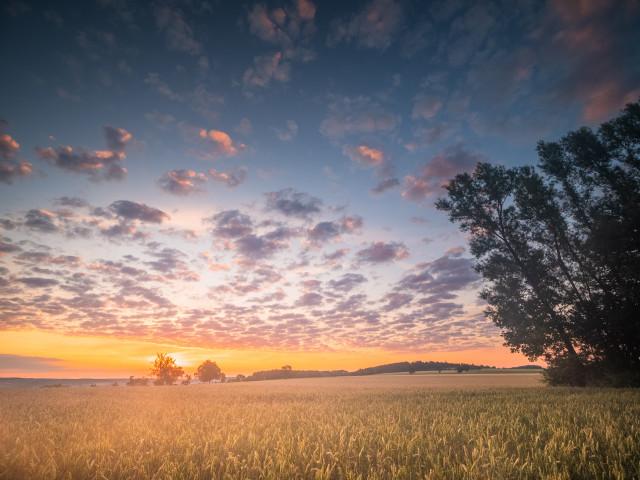 Sonnenaufgang auf dem Galgenberg bei Neuhausen