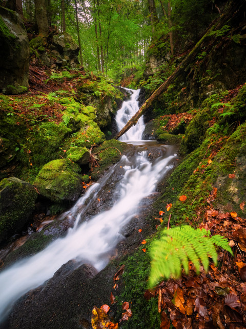 Obere Alpersbach-Wasserfälle (erste Fallstufe)