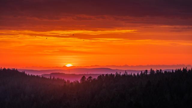 Sonnenaufgang mit Alpenblick bei Föhnwetterlage