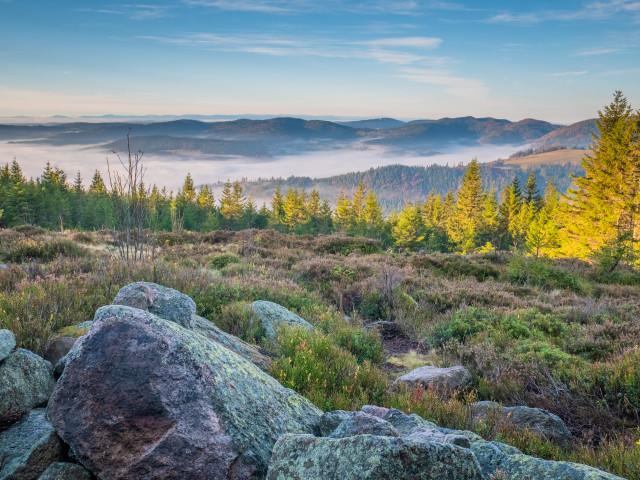 Herbstmorgen auf der Schnepfhalde