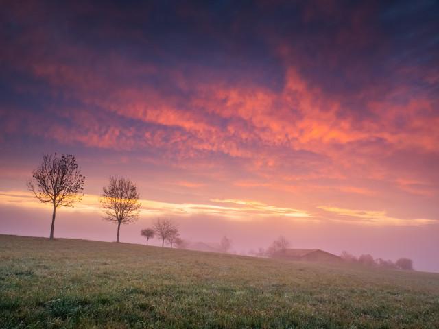 Morgenrot bei Göschweiler