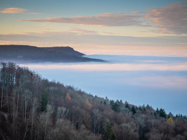Nebelmeer unter dem Randen