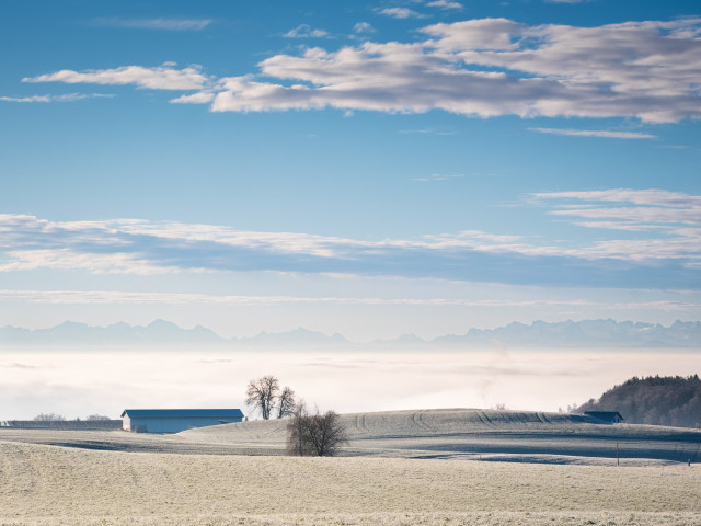 Alpenblick bei Lembach
