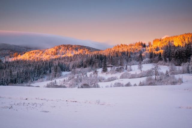 Winterlandschaft im Morgenlicht