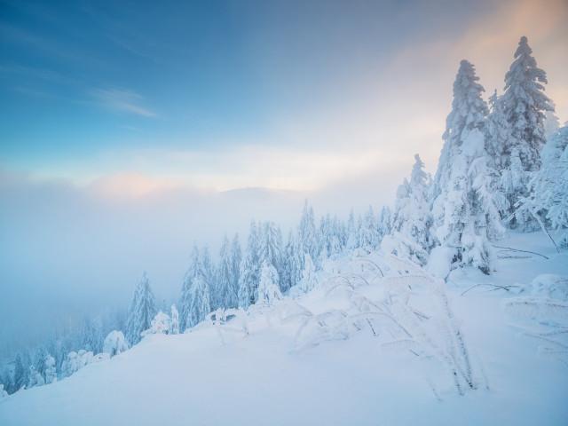 Winterlandschaft auf dem Stübenwasen