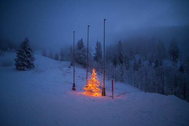 Weihnachtsbaum bei der Zastler Hütte