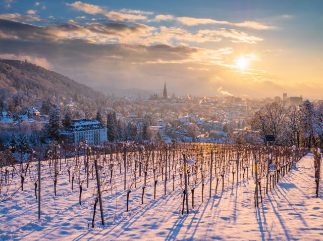 Winterlicher Sonnenuntergang über Freiburg