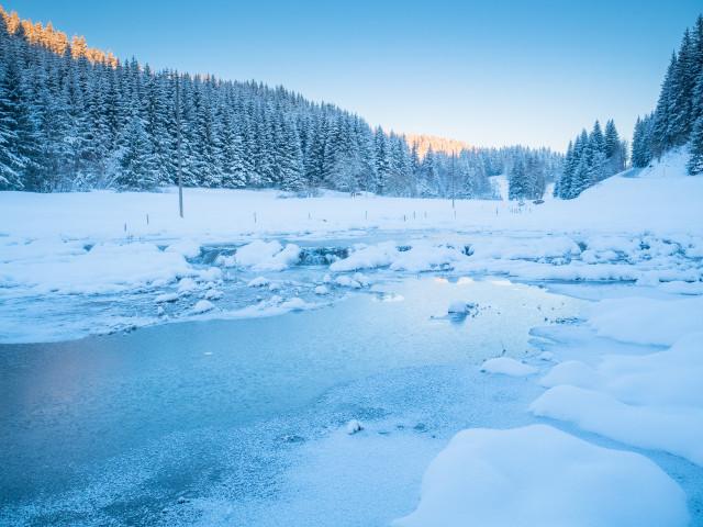 Winter am Furtwänglebach