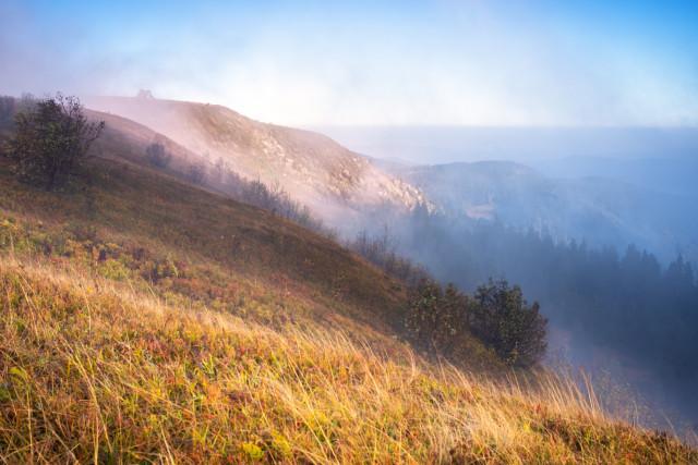 Nebelschwaden über dem Feldberg