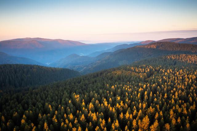Blick über das Simonswäldertal