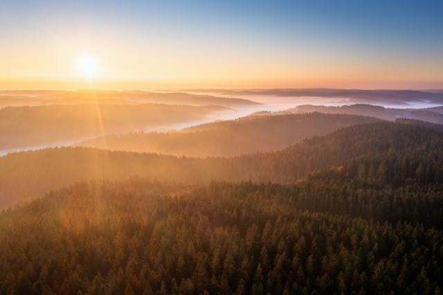 Herbstmorgen über dem Brend, Blick Richtung Furtwangen