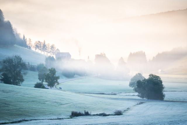 Herbstmorgenstimmung bei Waldau