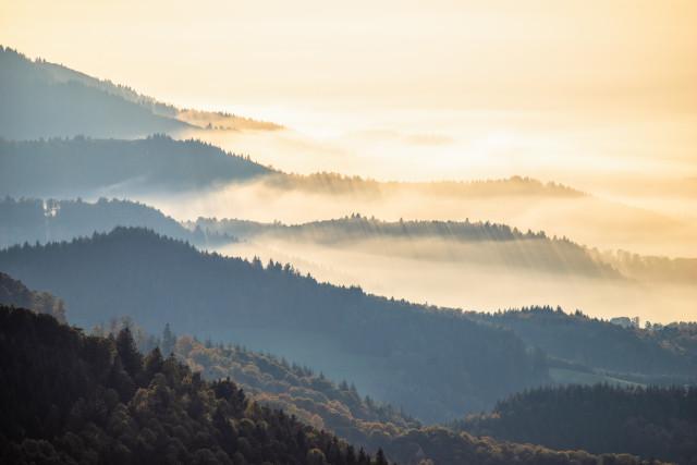 Nebel unter dem Schauinsland